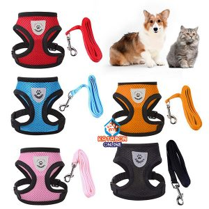 Pet Chest Adjustable Harness With Leash For Cats & Puppy